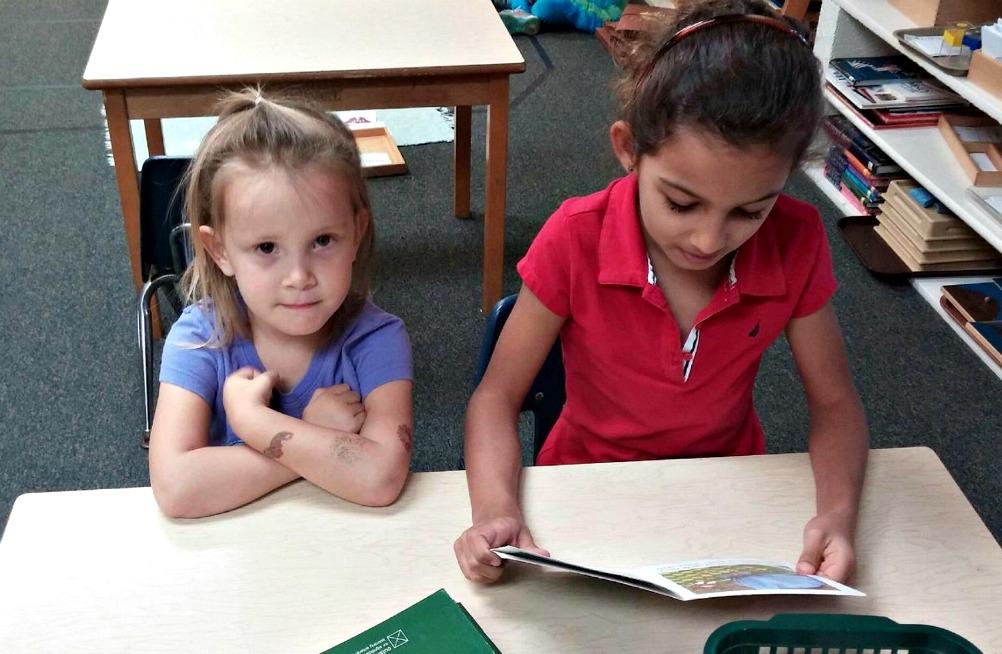 Why Montessori Has Multi-Age Classrooms